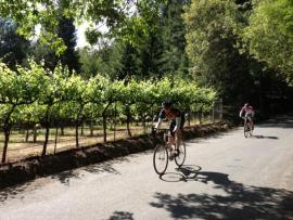 Russian River Cycle Service
