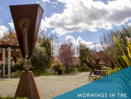Mornings in the Sculpture Garden Photo