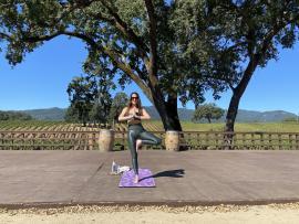 Wine Country Yoga at B.R. Cohn Winery Photo
