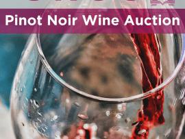 Virtual Event: Healdsburg Crush Online Wine Auction Photo