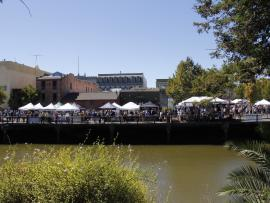 Petaluma River Craft Beer Fest Photo