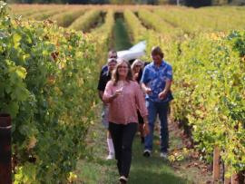 Harvest Hikes with the Winemaker Photo