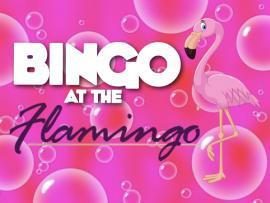 FLAMINGO BINGO_SoCo.jpg