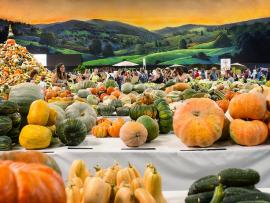 9th Annual Heirloom Exposition Photo