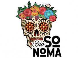 Dia Sonoma Photo