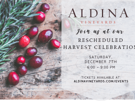 Aldina Vineyards Harvest Celebration Dinner Photo