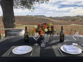 Virtual Event: Brunch with the Winemaker Photo