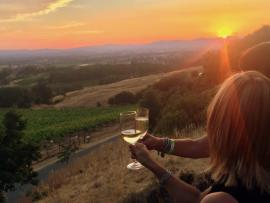 Wines & Sunsets Photo