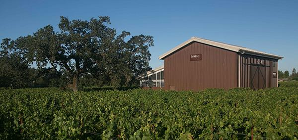 Oak Tree, Winery, and Vineyard Photo 4