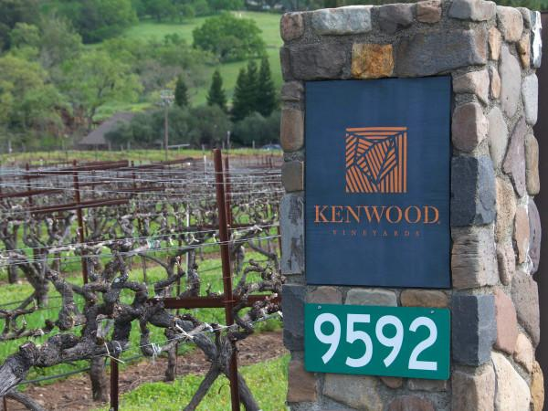 Kenwood Vineyards Photo 6