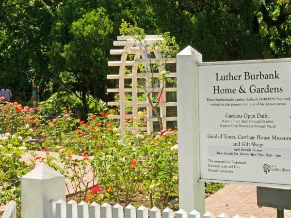 Luther Burbank Home & Gardens Photo 4