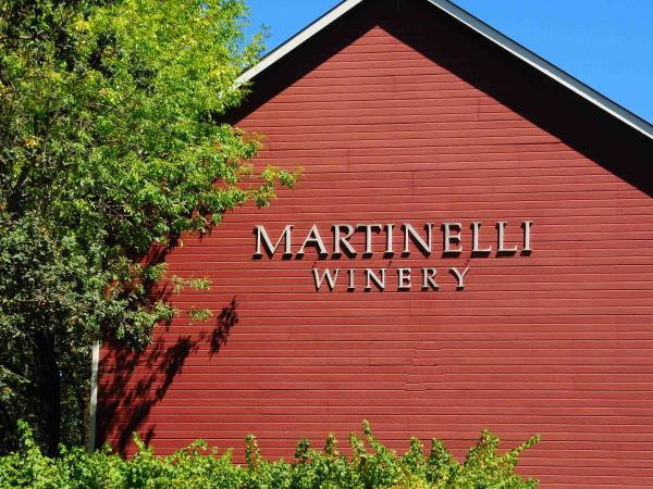 Martinelli Winery & Vineyards Photo 4