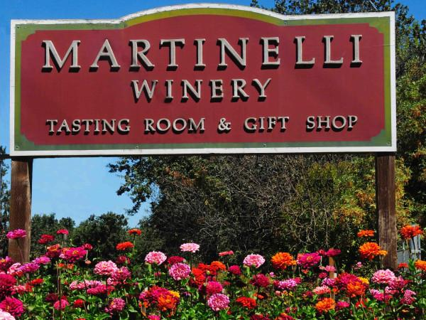 Martinelli Winery & Vineyards Photo 5