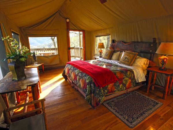 Glamping in style at Safari West Wildlife Preserve & African Tent Camp Photo 5