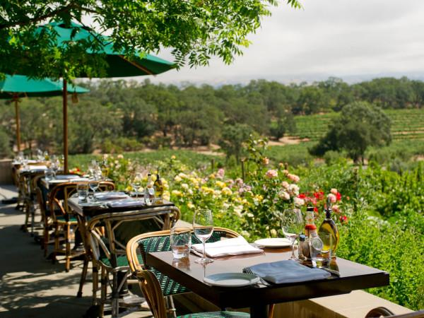 Dining at Rustic at Francis Ford Coppola Winery Photo 4