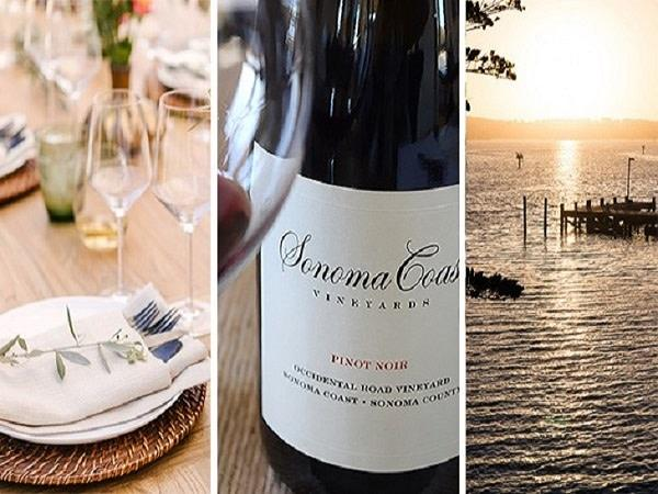 Sonoma Coast Vineyards Harvest Dinner Photo 6