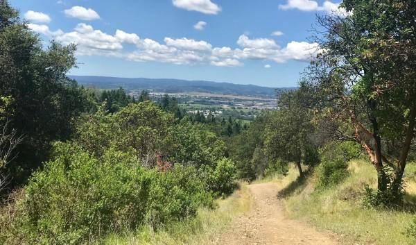Views from Shiloh Regional Park Photo 18
