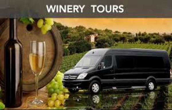 We offer our Mercedes Sprinters for Wine Tours, Weddings and Corporate Events Photo 7