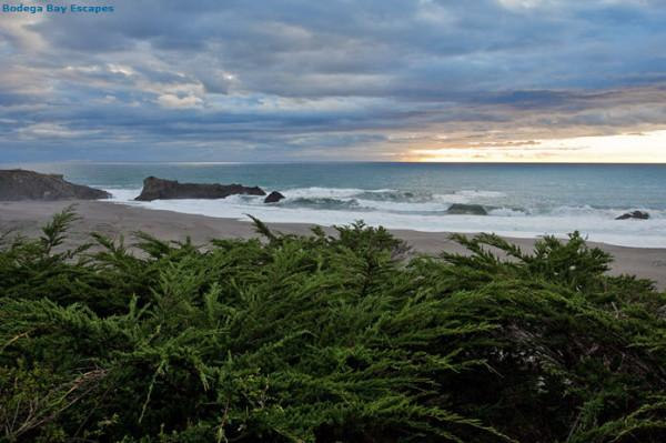 Bodega Bay Escapes Photo
