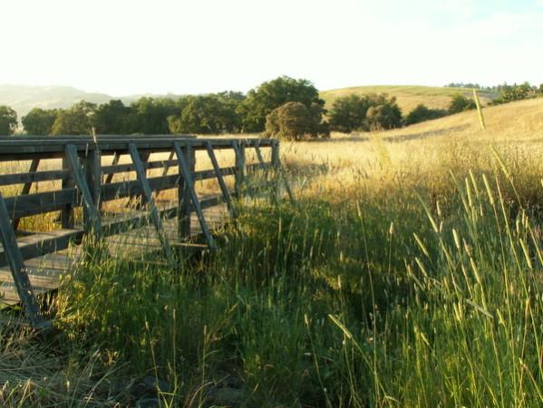 Crane Creek Regional Park Photo 2