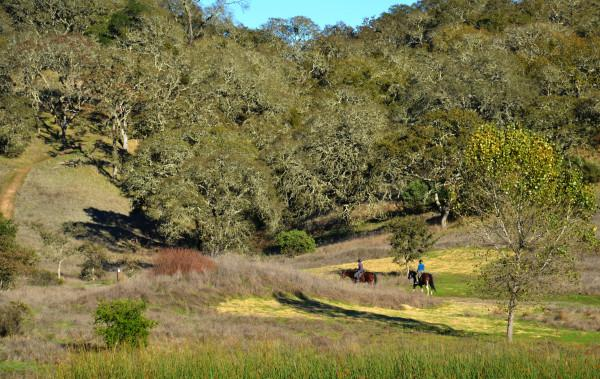 Foothill Regional Park Photo 3