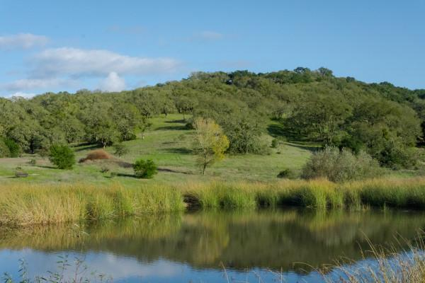 Foothill Regional Park Photo 5