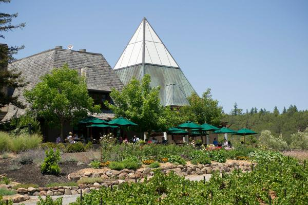 The terrace at Francis Ford Coppola Winery Photo 4