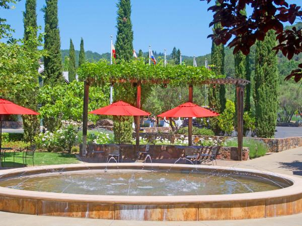Sebastiani Vineyards & Winery Photo 4