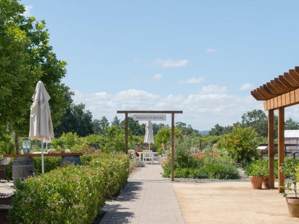 DeLoach Vineyards Photo 6