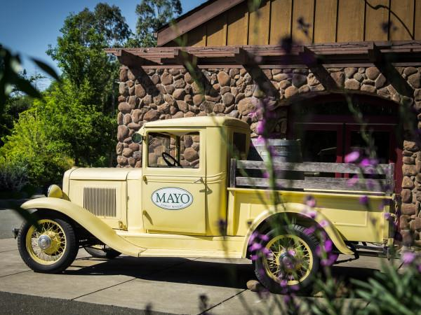Mayo Family Winery Photo 2