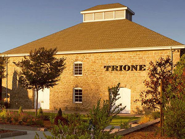 Trione Vineyards & Winery Photo