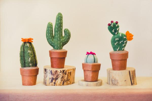Felt Cacti Photo 6