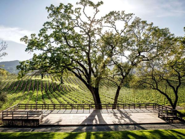 B.R. Cohn Winery & Olive Oil Company ampitheater Photo 4