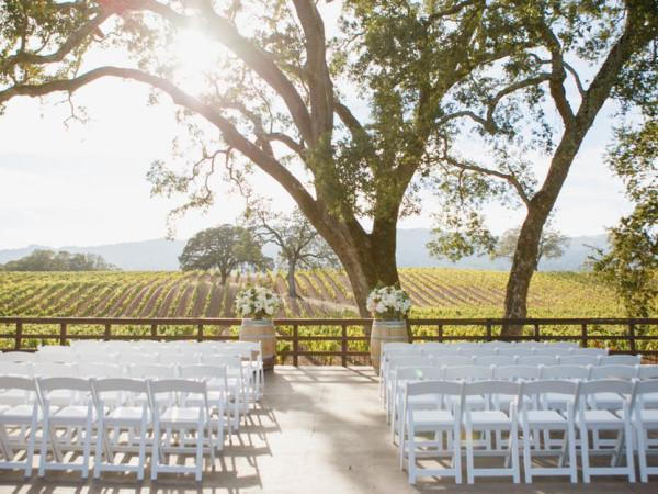 B.R. Cohn Winery & Olive Oil Company wedding Photo