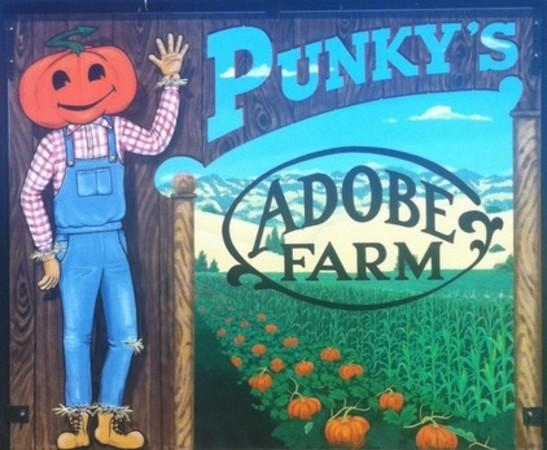 Punky's Adobe Farm Photo 2
