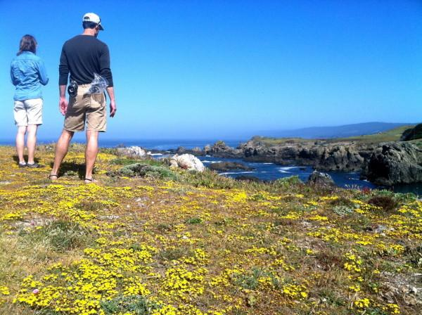 hiking, Walking, Nature, Wildflower, Geology, Historical, Architectural Tours Photo 5