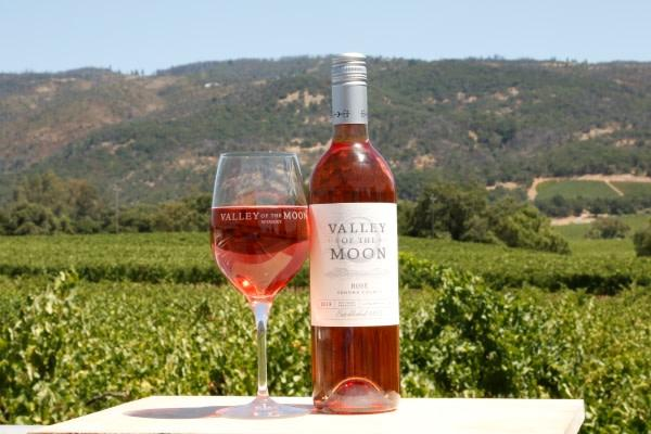 Nothing says summer like a glass of rosé Photo 7