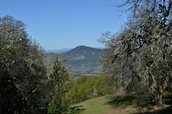 North Sonoma Mountain Regional Park view Photo 3