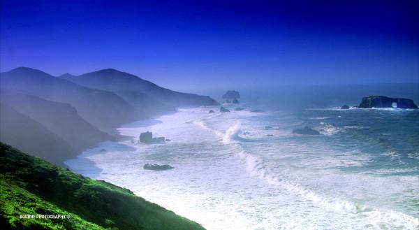 Goat Rock, Sonoma Coast Photo 3