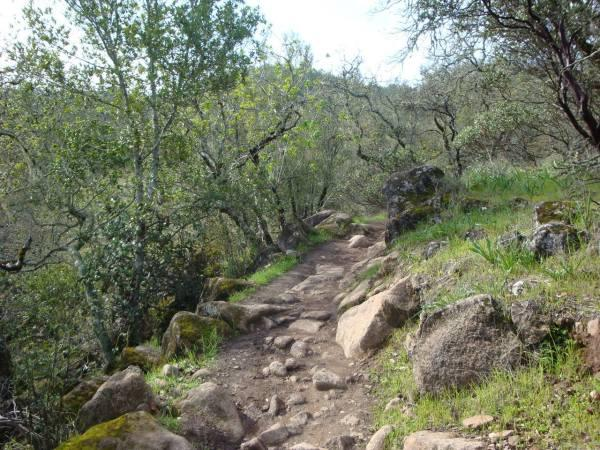 Trione-Annadel State Park Photo