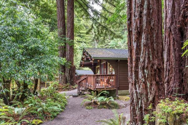 The Old Cazadero Cabin Photo 4