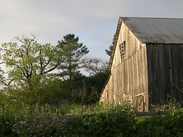 Our Barn circa 1850 Photo