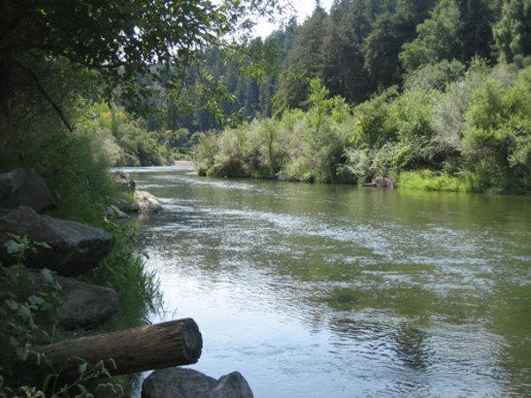 Burke's Canoe Trips on the Russian River Photo 2