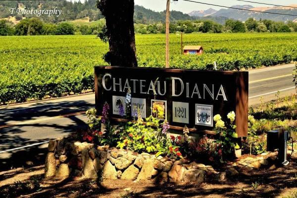 Chateau Diana Photo