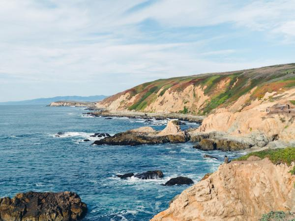 Bodega Head in the Sonoma Coast State Park Photo 6