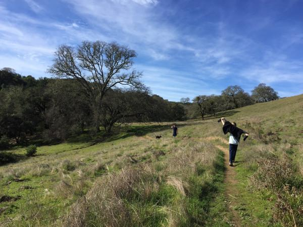 Hiking at Lake Sonoma Recreation Area Photo 3