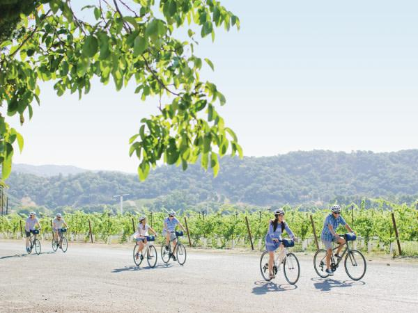 Guided bike tours visiting local wineries Photo 3