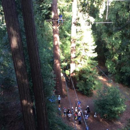 Challenge Sonoma Adventure Ropes Course Photo 2