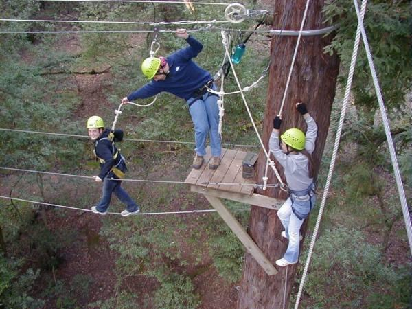 Challenge Sonoma Adventure Ropes Course Photo