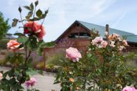The view of Winery Barn from our rose garden Photo